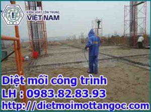 phòng chống mối công trình