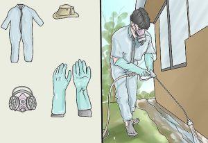 diệt mối tại nhà