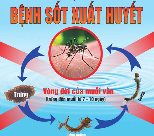 Phun thuốc diệt muỗi tại nhà