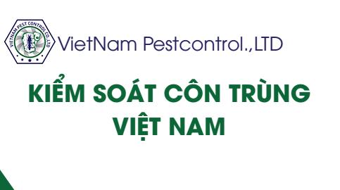 Trung tâm diệt mối tại Hà Nội
