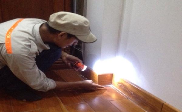 cách diệt mối trong tường nhà