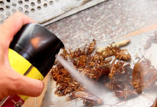 phòng và tiêu diệt côn trùng