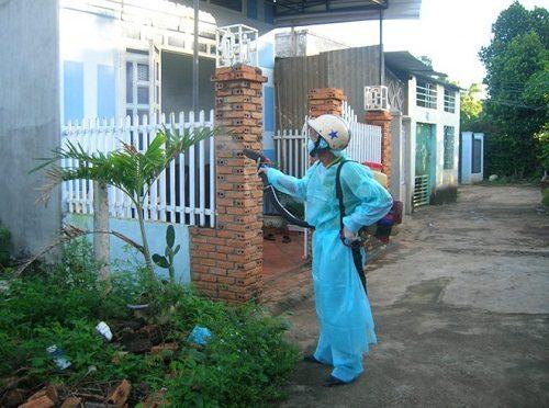 Cách phòng chống và tiêu diệt côn trùng hiệu quả
